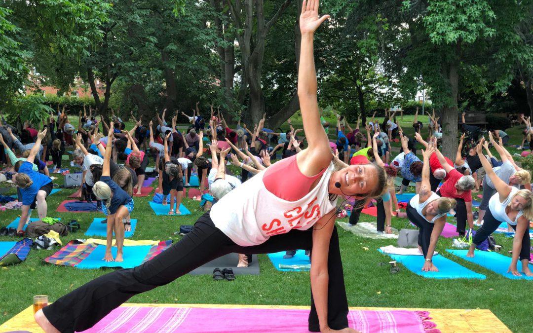 Yogasommer 2021 – Sommer – Sonne – Yoga